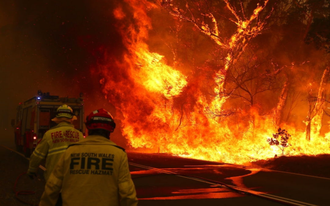 Bushfire relief for South Australia